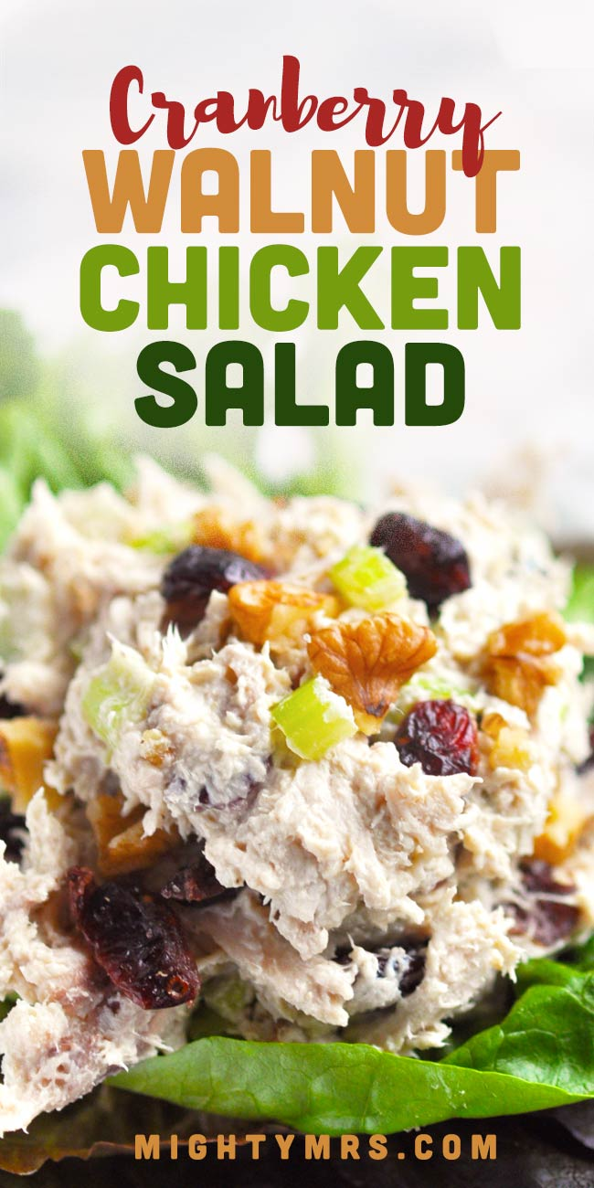 Rotisserie Chicken Salad with Cranberries