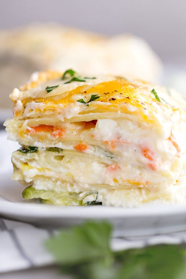 Easy Vegetable Lasagna with Alfredo Sauce