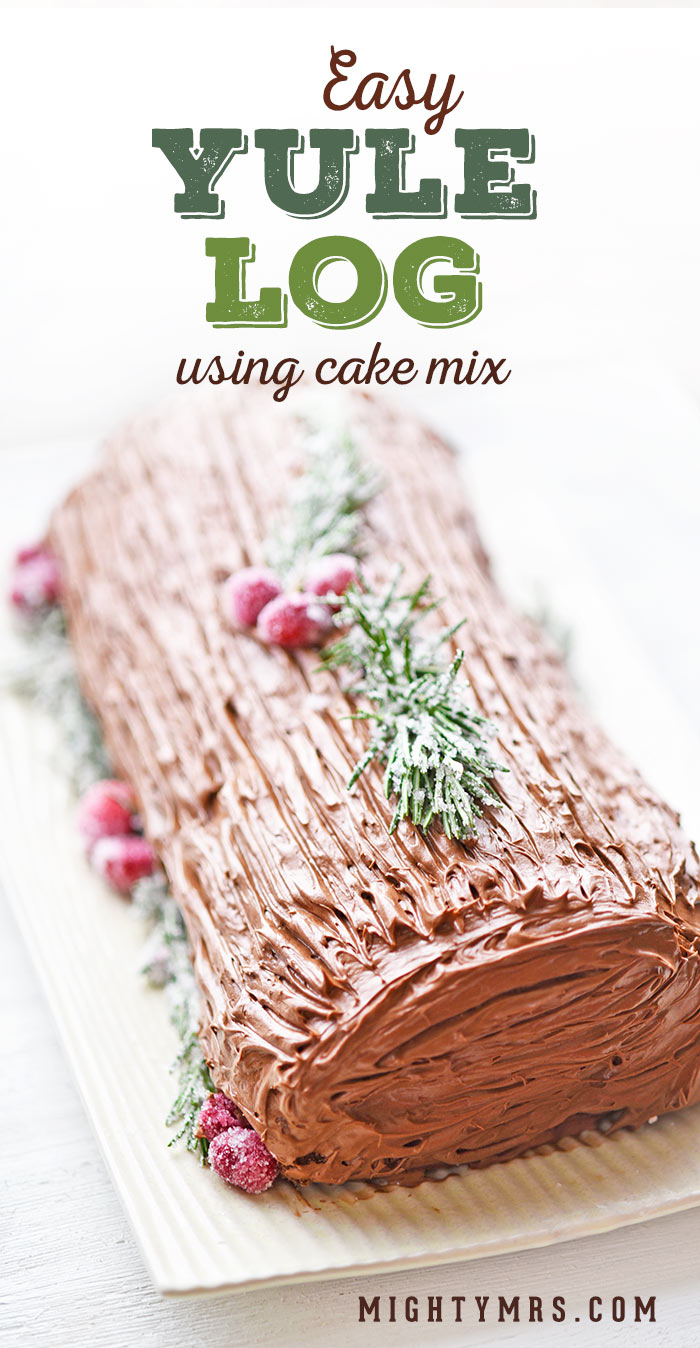 Easy Yule Log Recipe Using Cake Mix