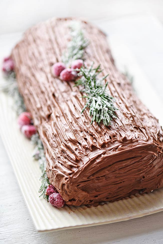 Chocolate Yule Log Recipe Cake Mix