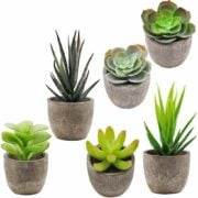 Faux Decorative Plants