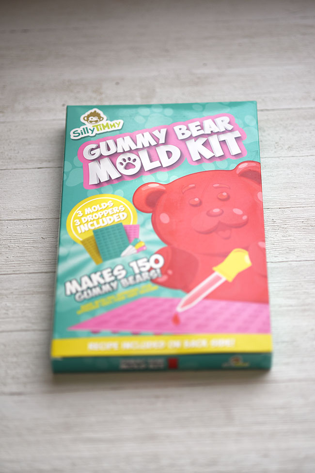 Homemade Fruit Snack Gummy Bear Mold